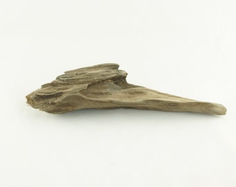 Small Driftwood