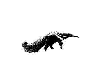 Giant Anteater Decal