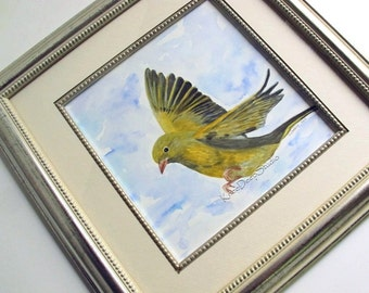 Bird in Flight Watercolor Painting Fine Art in Mat and Frame European Green Finch blue sky modern realism original ooak contemporary art