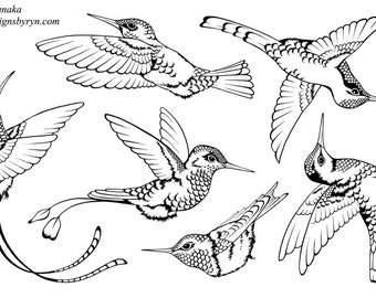 Designs by Ryn - Unmounted Rubber Stamp Set -Hummingbirds 2-UM-M7