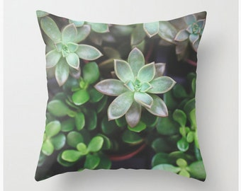 Velveteen Pillow Cover, Pastel Green Succulent Cacti Modern Nature Botanical Garden Cactus Green, Pillow, Bedroom Decor Living Room Decor