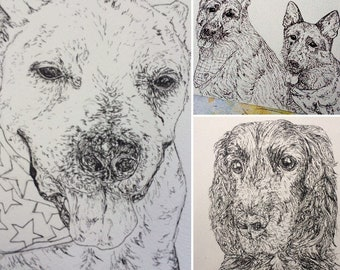 Custom pet or animal portrait - detailed fineliner drawing