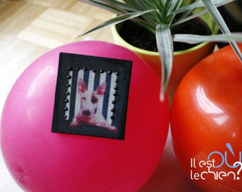 Pink dog square brooch and stripe