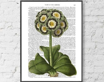 Floral wall art - Blue Primula Print - Floral print Garden decor Gift for mother Nature print Living room decor Botanical wall art Uk seller