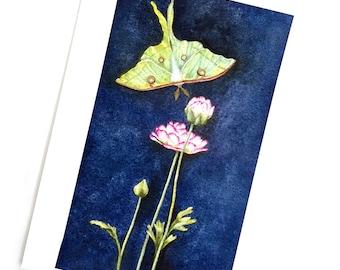 Luna Träume Kunstdruck, Luna Motte Kunstdruck, Luna Motte Drucken von Aquarellmalerei, ungerahmt Luna Motte Kunst, Luna Motte und Blumen Kunst