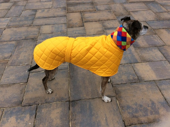 """Readymade greyhound coat in gold 28"""" long"""