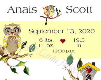Birth Nursery Art -Linda Paige Tolis-Baby Ollie Owl -Personalized Birth Announcement
