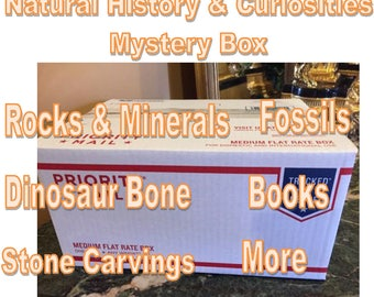 Mystery Box full of Fossils, Minerals & cool stuff from my collection - Fun gift for a rockhound - Worth more than you pay