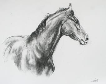 SALE Original horse art equine art energy and movement equine horse charcoal movement art drawing 'Proud I' by H Irvine