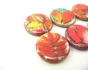 6 fall Autumn leaves fridge magnet, pin or wine charm set / red, orange, yellow, leaf
