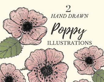 Hand Drawn Pink Poppies- set of 2 flower clipart, flowers, plants, botanical, rustic, romantic