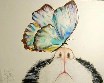 DESSIN | Chat Vs Papillon