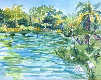 Tropical Tampa