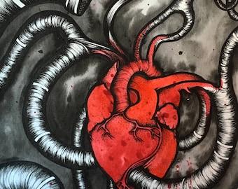 PRINT: anatomical heart