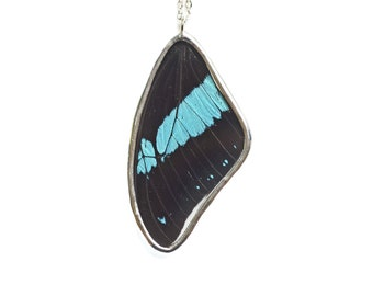 Papilio Bromius Butterfly Wing Necklace. Real Butterfly Wing Pendant. Real Butterfly Wing Jewelry. Nature Jewelry. Preserved Butterfly.