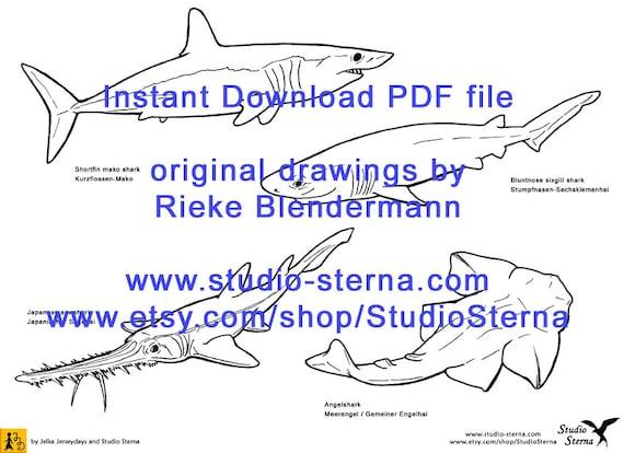 Niedlich Große Weiße Hai Malvorlagen Fotos - Dokumentationsvorlage ...