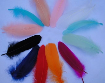 Feathers for Craft Projects