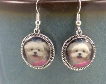 Maltise Lhasa Apso Poodle Dog Puppy Earrings Jewelry 3D DimensionalPet