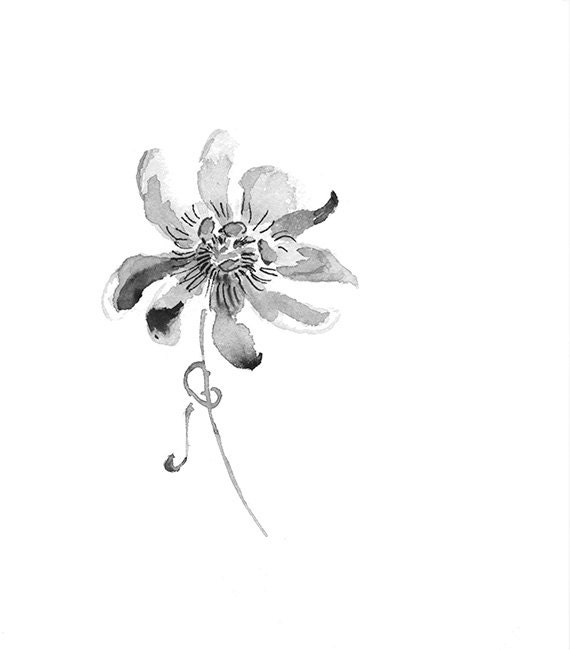Black Flower Watercolor Art By Tae Lee: Passion Flower Black And White Print From Original Watercolor
