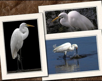 3 Egret Photo Note Cards Handmade Set - Egret Note Card - 5x7 Egret Card - Blank Bird Note Cards - Egret Photo Greeting Cards Handmade (BD1)