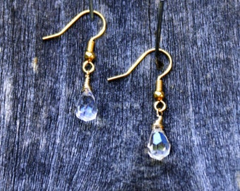 Clear Iridescent Crystal Earrings with Gold Earring Wires