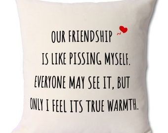 Our Friendship Is Like Pissing Myself cushion, friendship pillow,best friend gift,friendship,best friends,best friend pillow,friend pillow