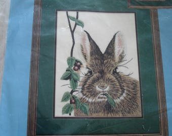 The CLADAMAR DESIGNS Needlepointing EmbroideryKit 80319 Cottontail Rabbit.