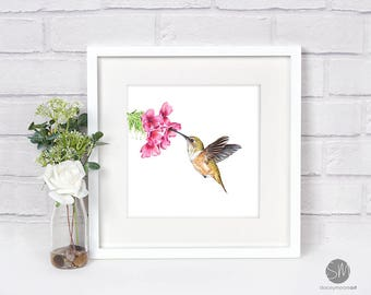 Humming Bird Print Framed Artwork Picture