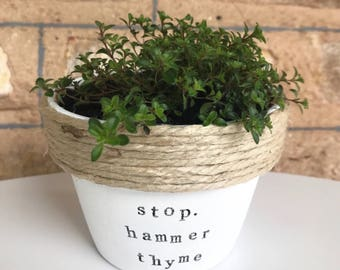 stop. hammer thyme | Funny music pot plant gift | with a pun | song | lyrics 11cm pot
