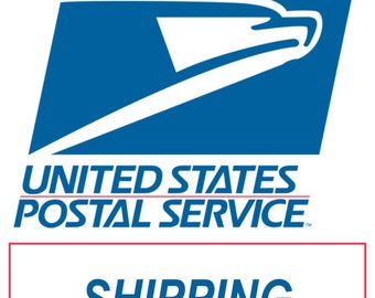 Add Insurance for First Class Shipping or Extra Insurance for US Priority Mail