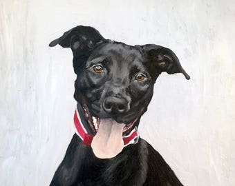 12 x 12 Custom Oil Painted Pet Portrait