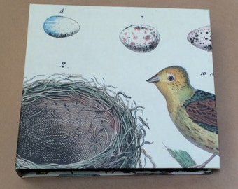 Birds and Eggs book