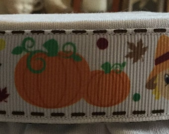 Fall Pumpkin Harvest