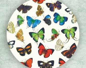 Butterfly group I plate