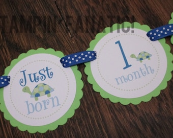 Too Cute Turtles Collection Just Born/0-12 mos Banner with clips. First Birthday Photo Banner. Picture Banner. Turtle. Under the Sea.