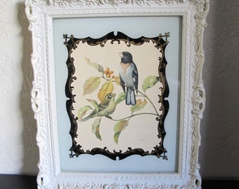 60s Robin and Sparrow Print with Ornate White Frame Birds
