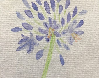 Hand Painted Watercolour Agapanthus Greetings Card