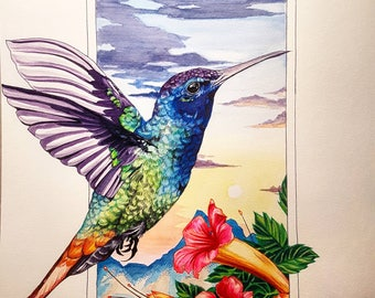 Humming bird flying over Hawaii