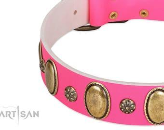 "Pink Leather Dog Collar with Plates - ""Hotsie Totsie"" Decor by Artisan (C440) - Studded Dog Collar - Handmade Dog Collar - Decorated Collar"
