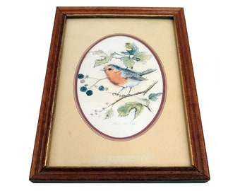 European Robin Print - Bird Art - Bird Print - Robin Print - Robin John Evans - Signed Art - Framed Bird - Vintage Robin - Nature Art
