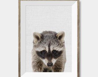Raccoon Print, Woodlands Nursery Decor, Wall Art, Animals Print, Woodlands Nursery Art, Modern Minimal,Animal Photo, Baby Room Prints,Kids
