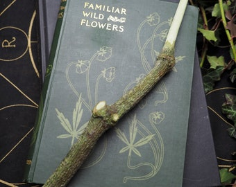 Natural, Mistletoe Wood Wand - Druid, Druidry Pagan, Wicca, Witchcraft