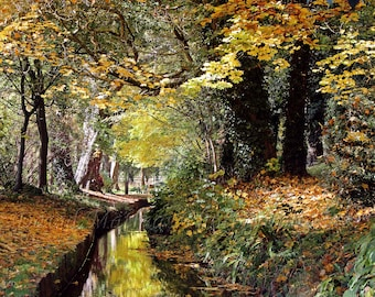 Autumn Colour Stream Trees river leaves British reflection Mounted Photo Print photography