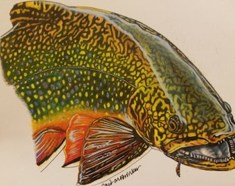 MINI 6.25x8 Brook Trout Print