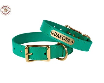 Leather Dog Collar Personalized Engraved ID Tag Nameplate Brass Buckle Turquoise Mint Green Small Medium Large