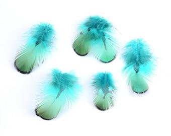 plumes pour bijoux