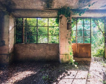Carriage House, 'Carried Away' Fine Art Photography, Limited Edition, Image Transfer on Wood Panel by Patrick Lajoie, Italy, overgrown