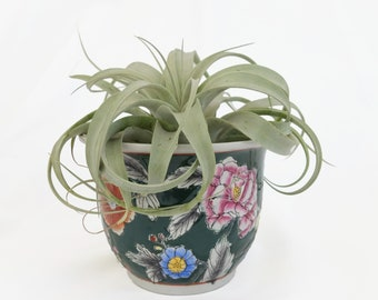 Vintage Floral New England Pottery Planter