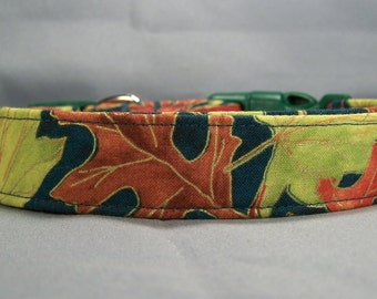 Autumn Leaves on Teal Dog Collar