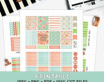 Watercolor Roses printable planner stickers for Erin Condren LifePlannerTM baby blue pink may watercolor sticker set spring april cut files